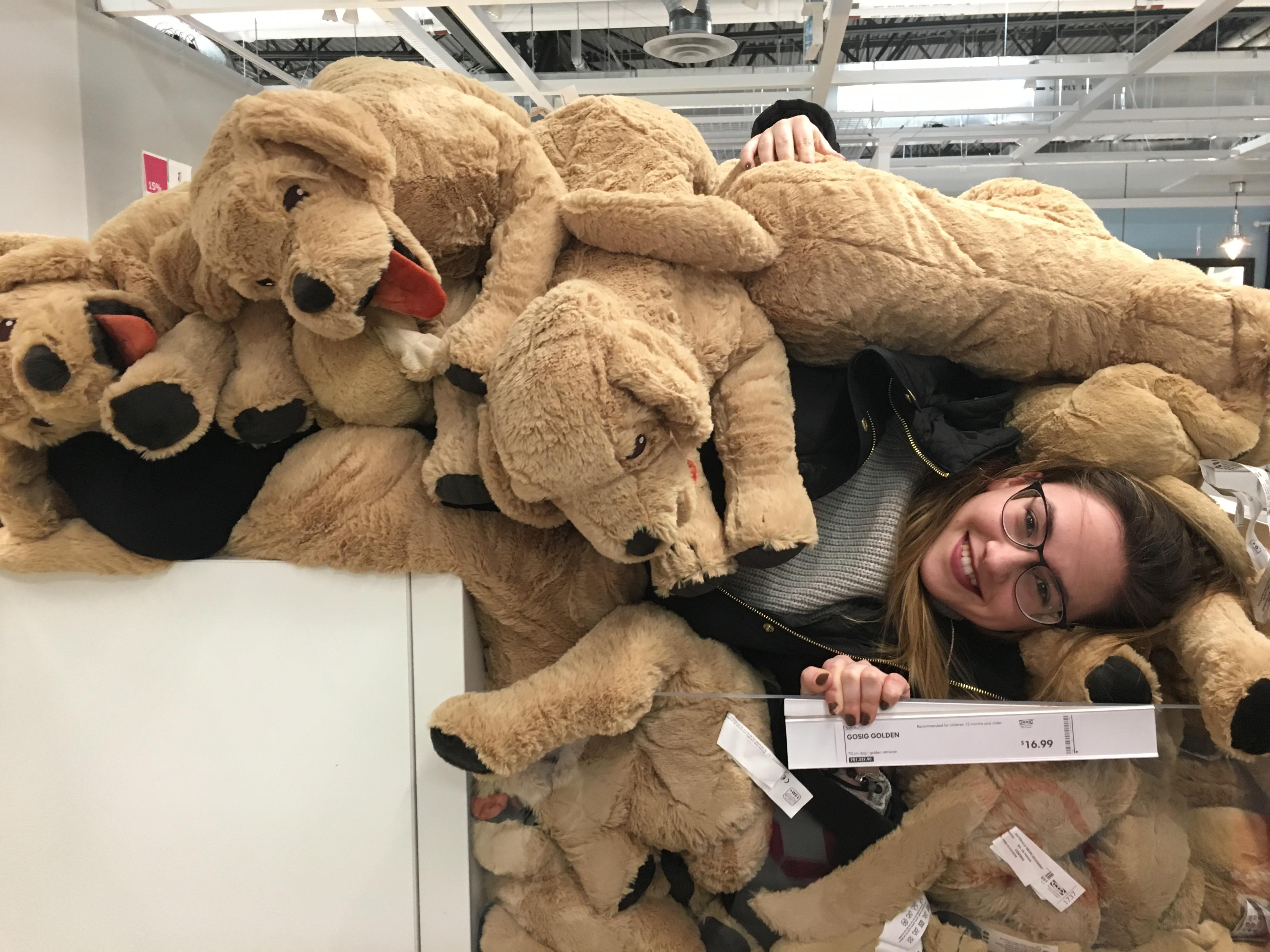 Ikea Fun